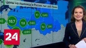 Бизнес на пшенице в России. Торговля на экспорт